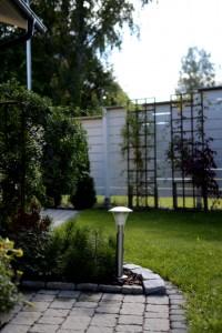 riippahernepuu pihasuunnittelu